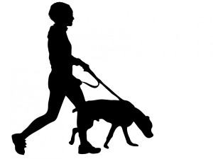 dog-walking-