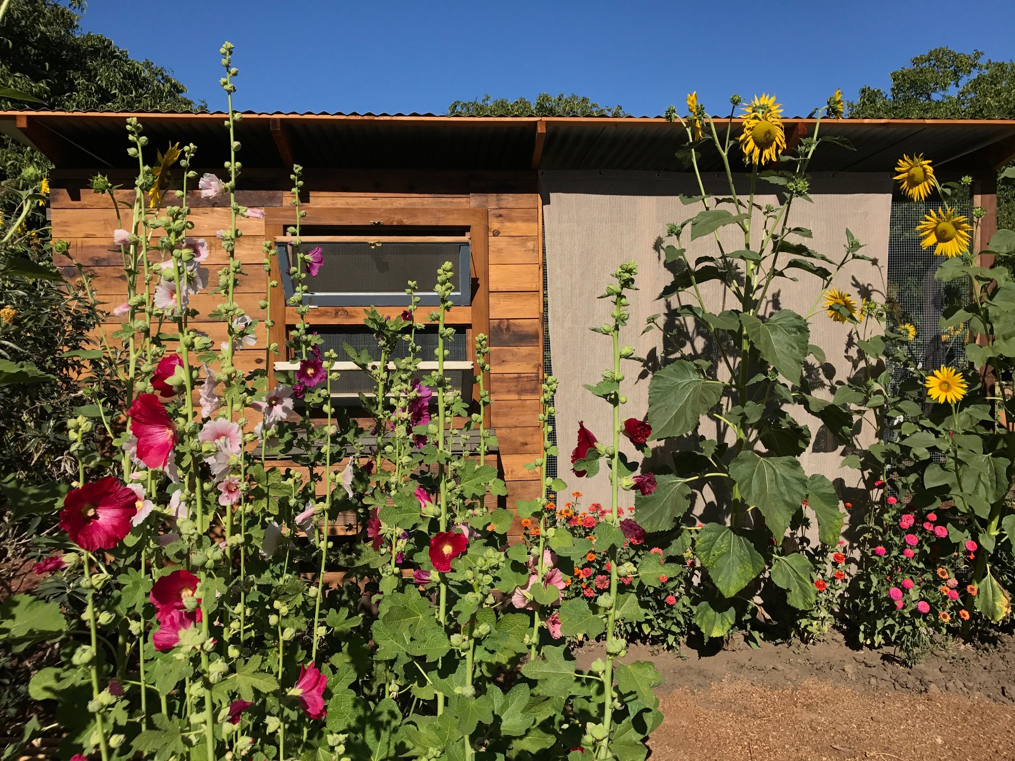 Bay-Friendly Garden Tour ~ May 20 – Napa County RCD